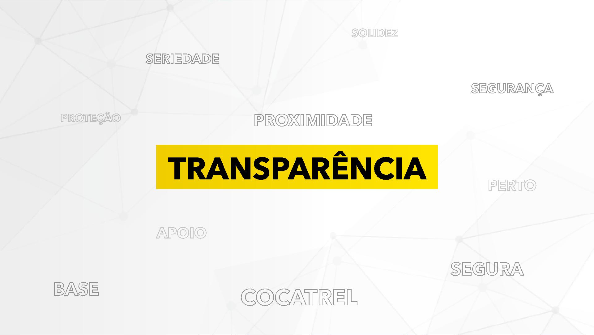 transparencia-marco-brito